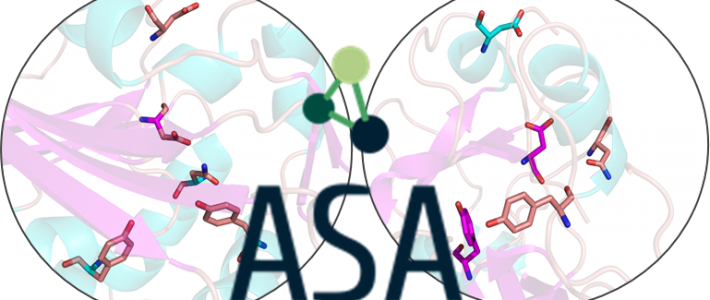 ASA – Active Site Analogies for Enzyme Function Prediction