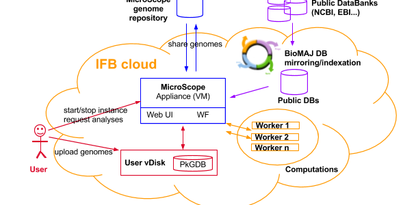 The MicroScope platform raised in the Cloud: toward a Software as a Service for on-demand analyses of microbial genomes (MicroCloud)