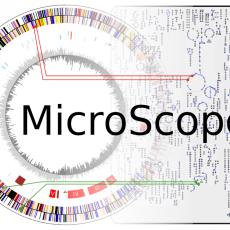 Ingénieur en bio-informatique pour le développement de la plateforme MicroScope