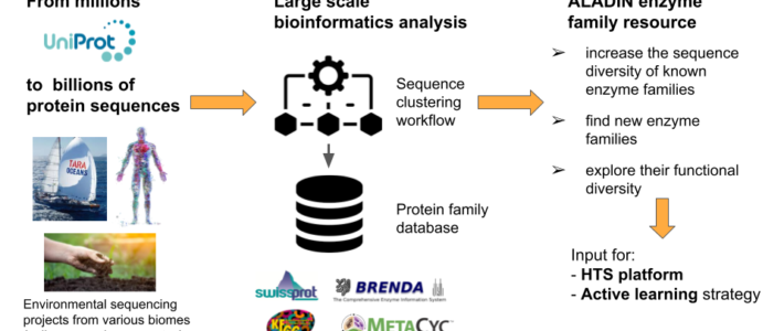 Post-doctoral position in bioinformatics: analysis of enzyme families from metagenomic data.